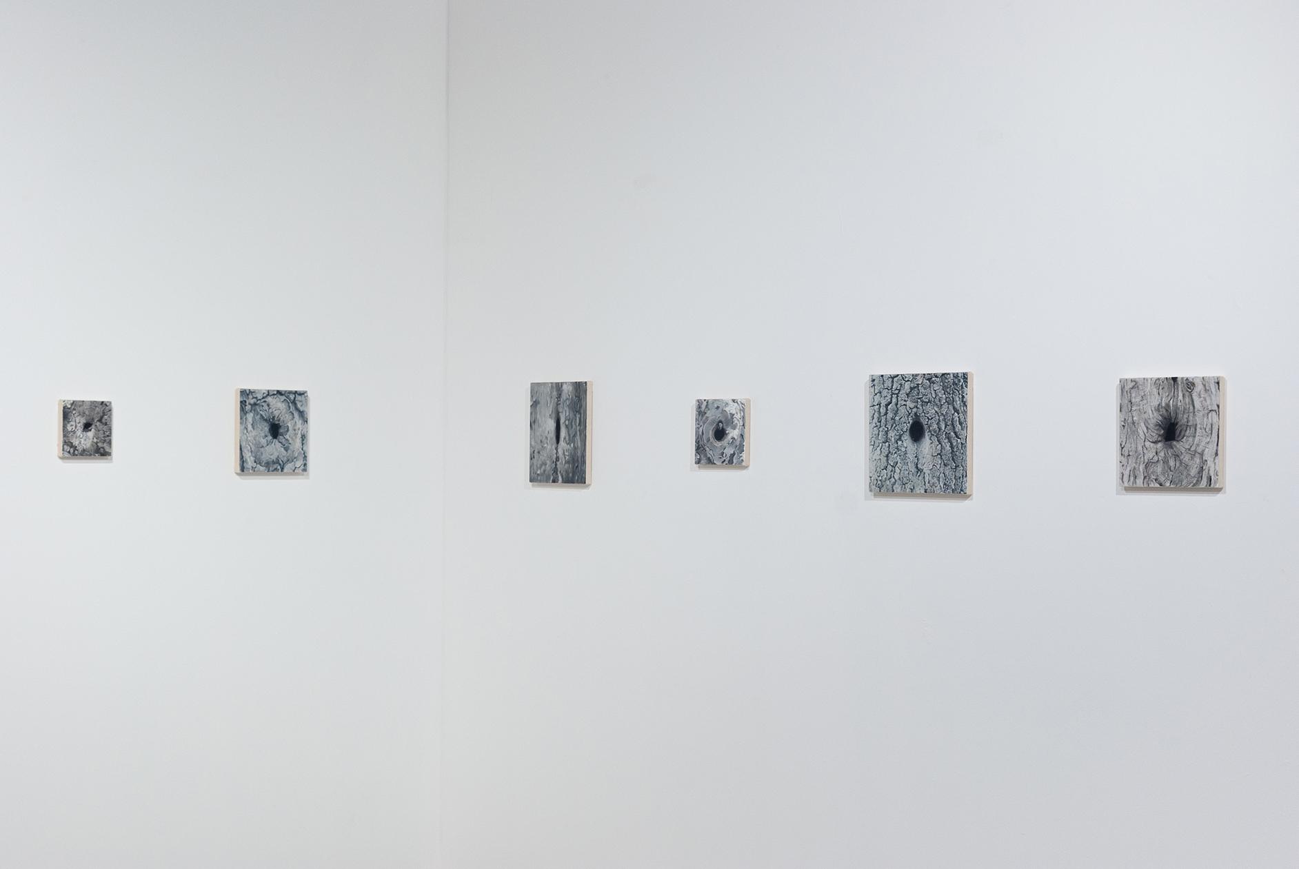 0 Małgorzata Pawlak, Dziuple, widok wyst. Powiększenie, Galeria Labirynt Lublin, 2020 2
