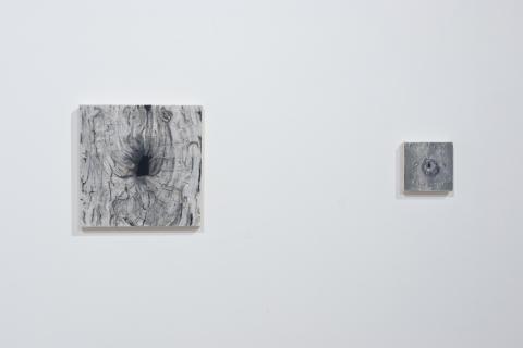 0 Małgorzata Pawlak, Dziupla 6, 25x25 cm, Dziupla 16, 10x10cm, 2020