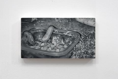 Wątróbka, 2021, olej na płótnie, 13x24 cm