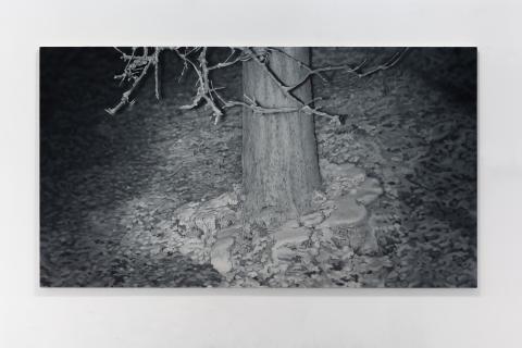 Pawlak M, Drzewo w drzewie, 110x200 cm, olej na płótnie, 2021